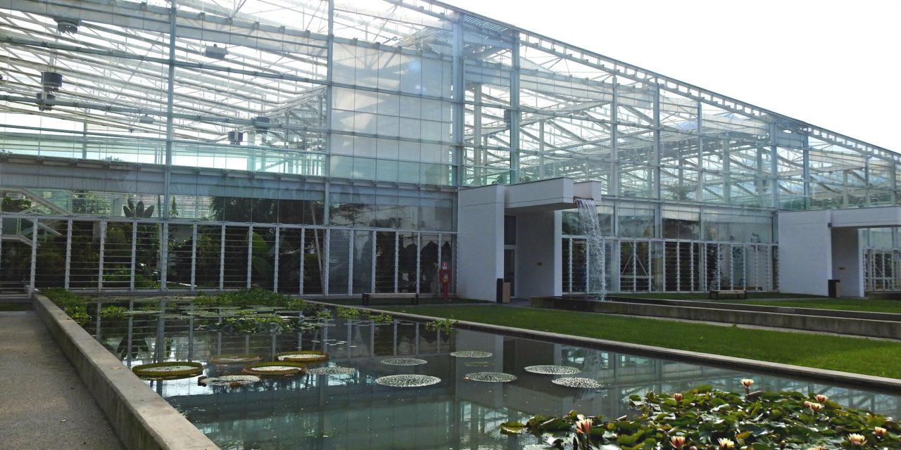 Orto Botanico di Padova: viaggio nella Biodiversità