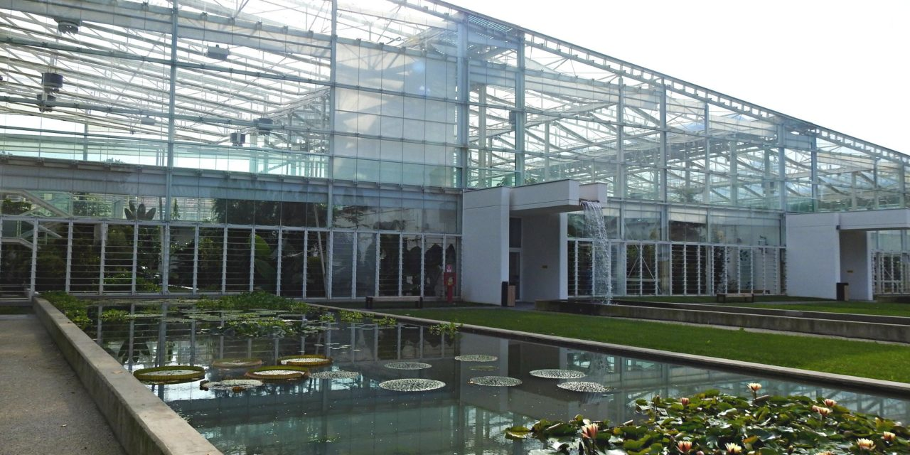 The Botanical Garden: a biodiversity journey in Padua