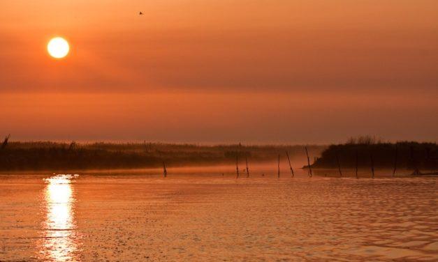 Delta del Po: tour straordinario alla scoperta della natura veneta