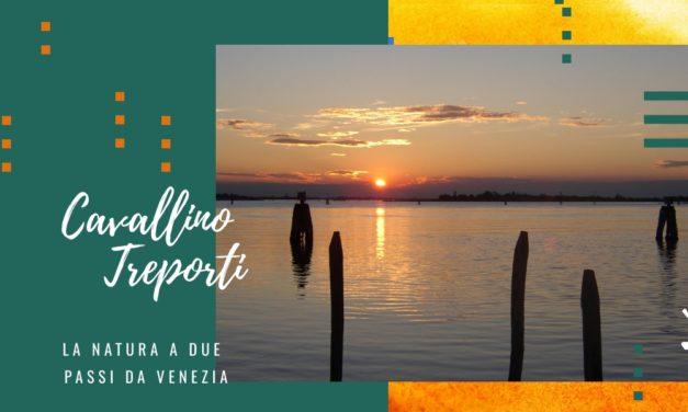 Cavallino Treporti, scopri la natura a due passi da Venezia