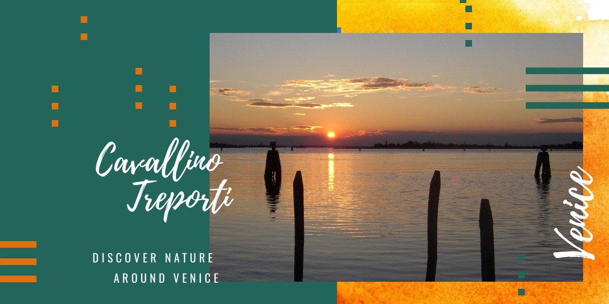 Cavallino Treporti, discover nature just a stone's throw from Venice