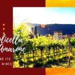 Valpolicella and Amarone, Verona and its precious wines