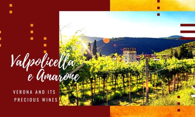 Valpolicella and Amarone, Verona and its precious wines