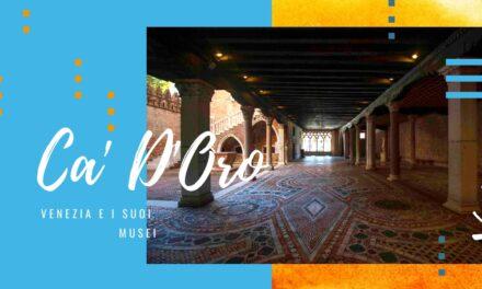 Ca' D'Oro, Venezia e i suoi musei