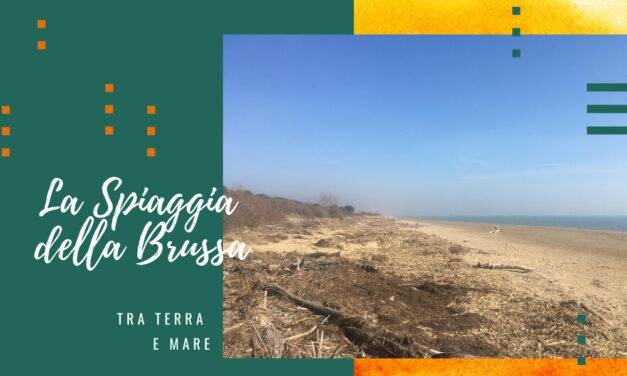 La spiaggia della Brussa: tra terra e mare